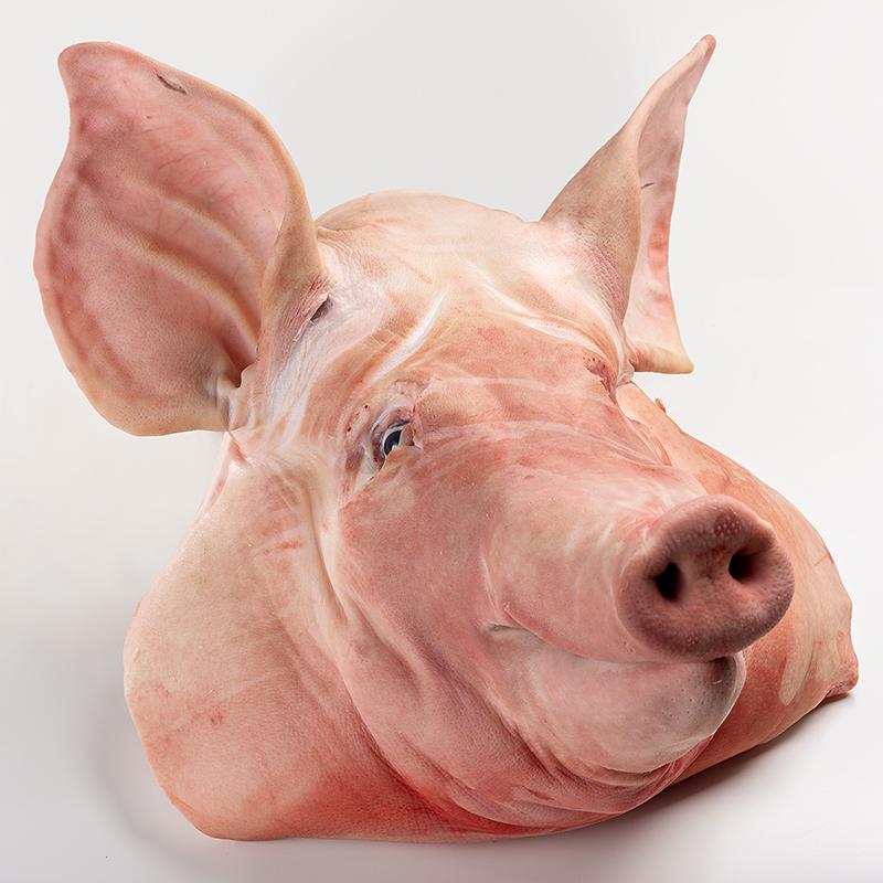 Granjero Feliz lideres en la comercializacion de carne de puerco cerdo  Cabeza con papada